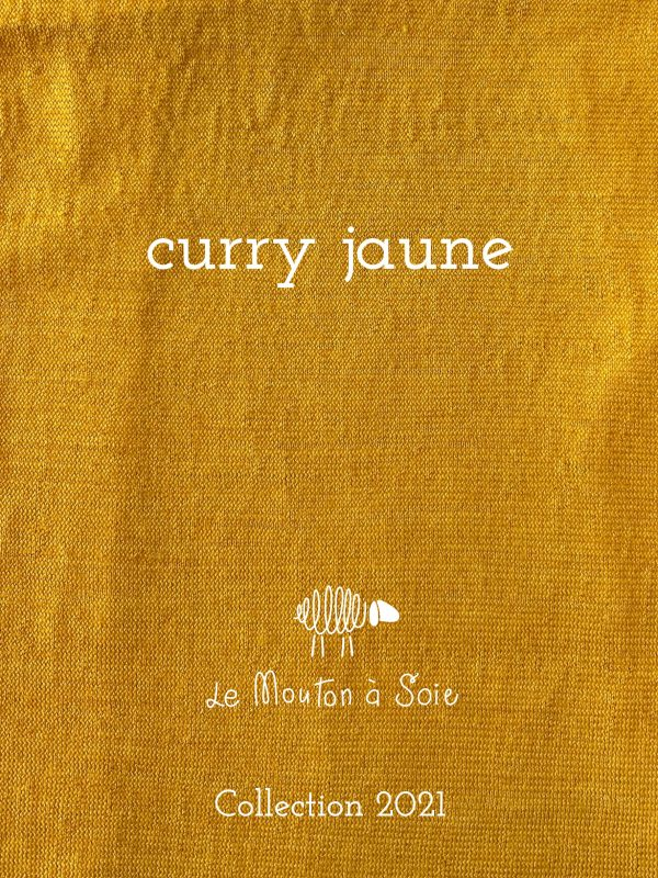 couleur curry